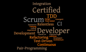 Certified Scrum Developer Training