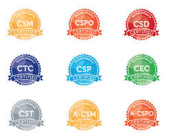 SEU Requirements for CSM and CSPO